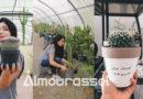 انطلقت بصفر مليم تمويل…شيماء شابة جامعية تنجح بامكانياتها الذاتية في بعث اول علامة تونسية في مجال مجال زراعة نباتات الزينة والهدايا (صور)