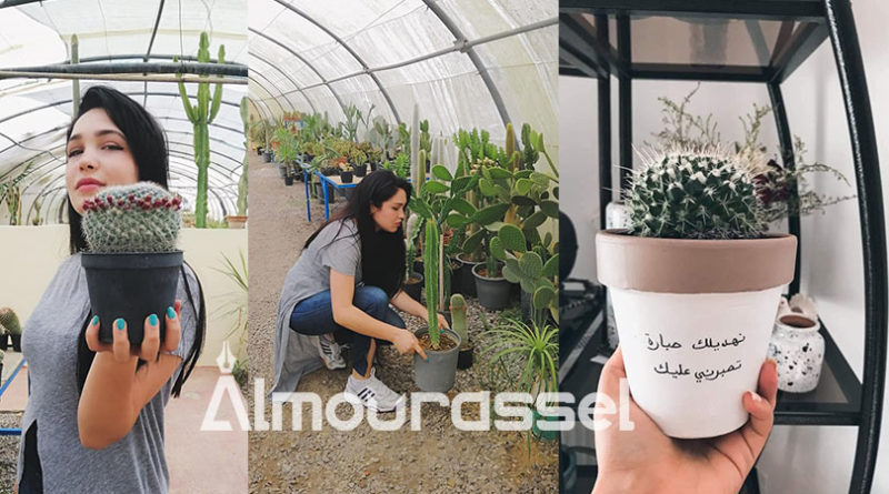 انطلقت بصفر مليم تمويل…شيماء شابة جامعية تنجح بامكانياتها الذاتية في بعث اول علامة تونسية في مجال مجال زراعة نباتت الزينة والهدايا (صور)