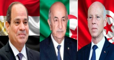 اتفاق مصري جزائري على دعم استقرار تونس وإنفاذ اختيارات شعبها